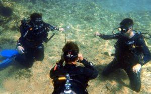 Plongée Découverte Plongée Malte